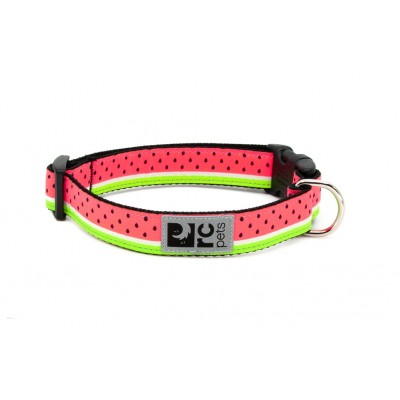 RC Pet Products - Collier pour chien en nylon à clip Moyen